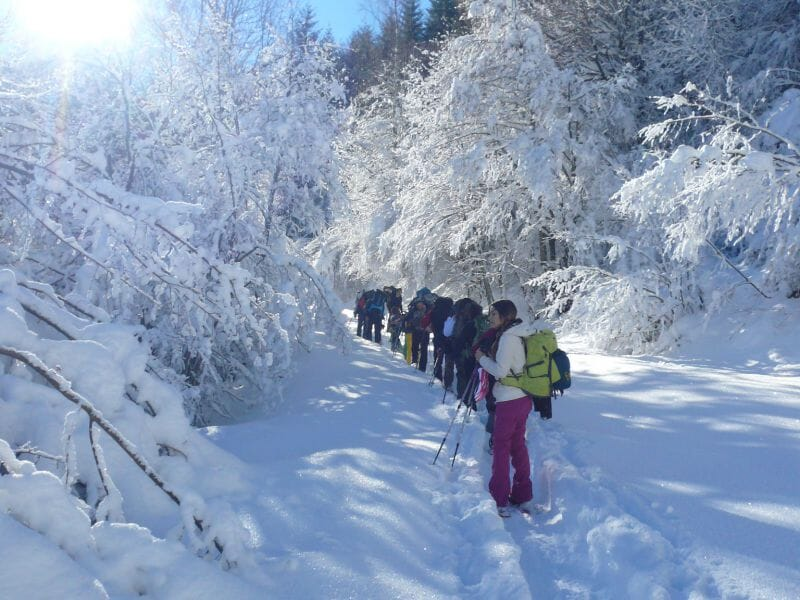 Randonnée Raquettes dans les Pyrénées en Ariège